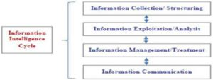 Necessary Competence for the Information Intelligence Process