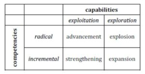 Capabilities-competencies matrix