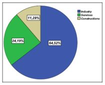 Distribution of the analysed companies per activity field