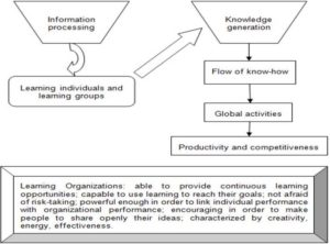 """Learning Organizations, as Drivers of Nowadays Society"""