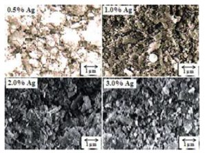 Scanning electron micrographs of milled powders with different amounts of silver