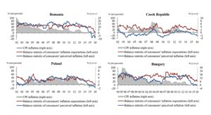 Balance statistics of perceived and expected inflation