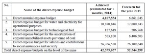 Direct expense budget of the Coal Mine of Lupeni  - RON